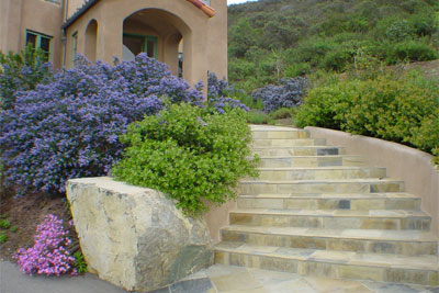 This curving stone staircase entry highlights an unirrigated native  landscape in Vista. - California Native Landscapes - Past Installations