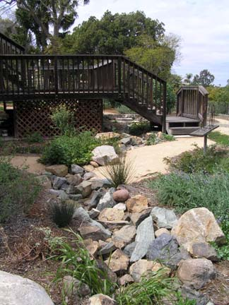 College Area backyard streambed