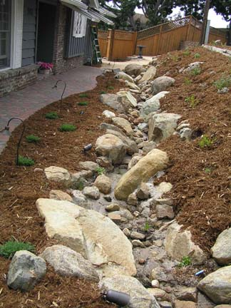 Mt Helix streambed at first planting
