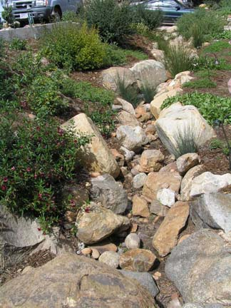 Mt Helix streambed one year later