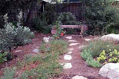 Wildomar garden, Wildomare backyard - California Native Landscapes - Past Installations